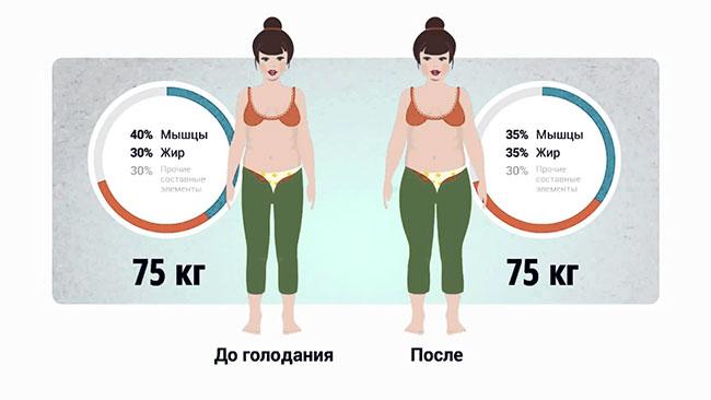 подписаться содержание мышц и жира в теле человека комары сне