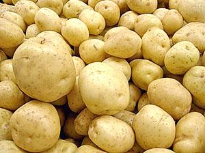 Сорт ранньої картоплі